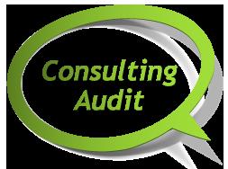 Création de site internet à La Rochelle - Consulting Audit